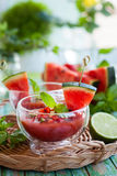 Watermelon Tomato Gazpacho Stock Images
