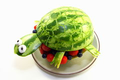 Watermelon turtle Stock Photography