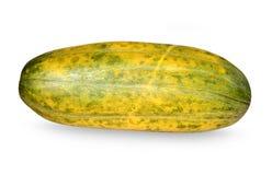 Watermelon or Vangi Stock Image