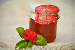 Watermelon and vanilla jam. Ingredients you need for watermelon and vanilla jam Royalty Free Stock Images