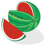 Watermelon vector. Illustration of watermelon fruits isolated on white background + vector EPS file Stock Image