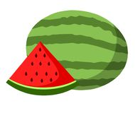Watermelon vector.Fresh watermelon illustration. Vector isolated on white background royalty free illustration