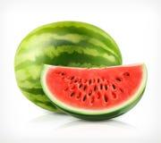 Watermelon, vector icon Stock Photos