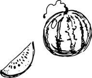 Watermelon. Vector illustration Stock Photography