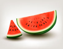 Watermelon. Vector Royalty Free Stock Photo