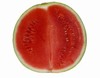 Watermelon. Water melon on white isolated background Stock Photography