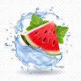 Watermelon in water splash realistic fruit icon. Illustration Royalty Free Stock Photo