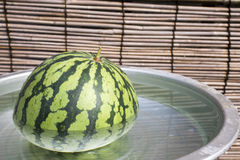 Watermelon in a water tub Royalty Free Stock Image
