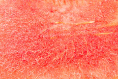 Watermelon, watermelon background Royalty Free Stock Image