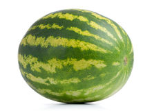 Watermelon  on white background. Royalty Free Stock Photo