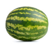Watermelon  on white background. Stock Image