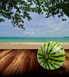 Watermelon on wooden deck with beach background Royalty Free Stock Photography