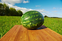 Watermelon on a wooden table Royalty Free Stock Photography