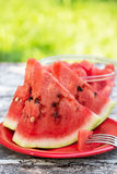 Watermelones Stock Images