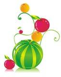 WatermelonFruit Stock Afbeeldingen