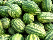 Watermelons. Background with watermelons in the market Royalty Free Stock Photo