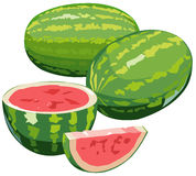 Watermelons. Illustration of watermelons with half and wedge, isolated on white Royalty Free Stock Photos