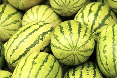 Watermelons Royalty Free Stock Images
