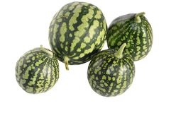 Watermelons Stock Photos