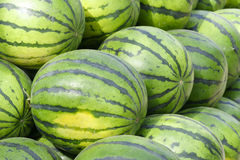 Watermelons. The background of many watermelons Stock Photo
