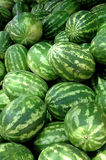 Watermelons. Plenty of fresh watermelons at market stock images