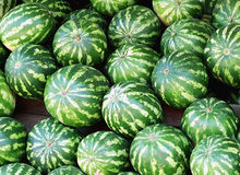 Watermelons. Like a texture royalty free stock photo