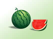 Watermelons. Illustration of watermelon and slices Stock Images