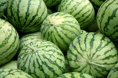 Watermelons. Pile of fresh tasty watermelons Stock Photo