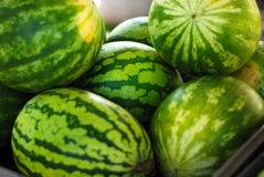 Watermelons. This is a shot of some decorative sweet Watermelon Stock Photo