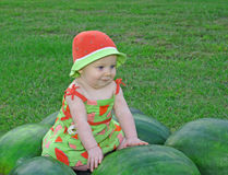 On the Watermelons Royalty Free Stock Photo