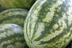 Watermelons Close Up Royalty Free Stock Image