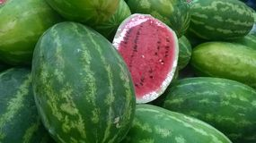 Watermelons. Colorful watermelon explosion of flavor Royalty Free Stock Images