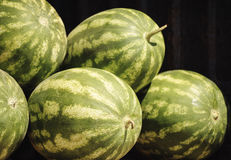 Watermelons In The Farmers Market. Organic Watermelons In The Farmers Market Royalty Free Stock Photo