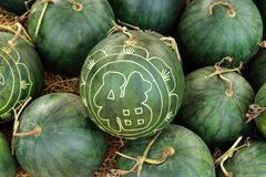 Watermelons with festive engraving on Eve of Vietnamese New Year. Hue, Vietnam.  royalty free stock image