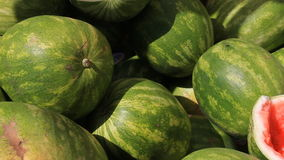 Watermelons 1 stock footage