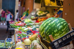 Watermelons in a greengrocer Stock Images