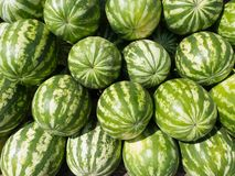 Watermelons heap Royalty Free Stock Photography