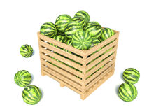 Watermelons isolated on white Royalty Free Stock Images