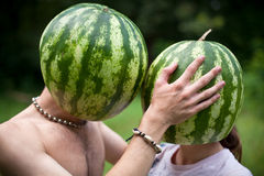 Watermelons love Stock Photography