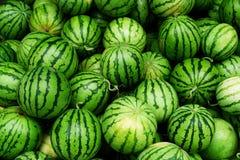 Watermelons many Royalty Free Stock Photo