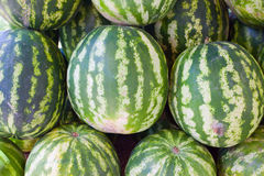 Watermelons in the market. Stock Images