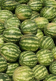 Watermelons in a marketplace Royalty Free Stock Photography