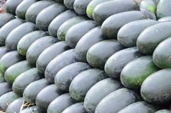 Watermelons. A photograph of a pile of watermelons at a wholesale fruit market Stock Photo