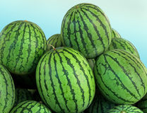 Watermelons pile Stock Photo