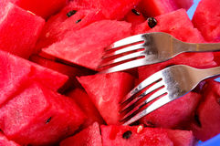 Watermelons slices Royalty Free Stock Images