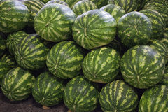 Watermelons, a source of vitamins Royalty Free Stock Images