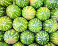 Watermelons Royalty Free Stock Photos
