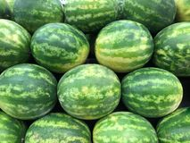 Watermelons Stacked. Multiple watermelons stacked at the grocery store. The orderly design has the melons with all their stripes going horizontally and the vivid Stock Photo