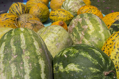 Watermelons in summer Royalty Free Stock Photo