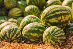 Watermelons were piled up Royalty Free Stock Photo